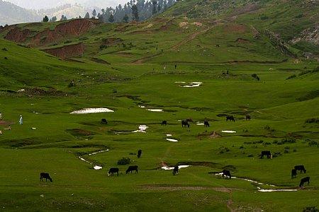 Kattints a képre a nagyításhoz  Cím:  Pakisztán.jpg Megnézték: 1058 Méret:  123,1 KB Azonosító:  1070