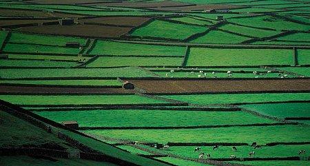 Kattints a képre a nagyításhoz  Cím:  Terceira - Azori-szigetek.jpg Megnézték: 3019 Méret:  79,2 KB Azonosító:  839