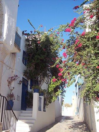 tunezia-sidi-bou-said-10.jpg