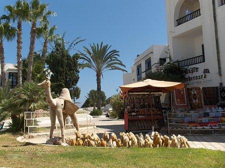 tunezia-tn_1tunezia2010-119.jpg