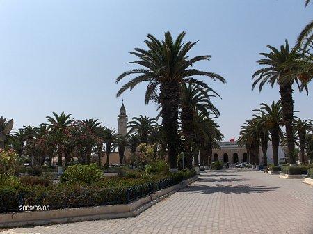 tunezia-tn_1tunezia-257.jpg