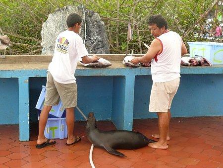 ecuador-es-galapagos-szigetek-tn_1nekem-mi-jut.jpg