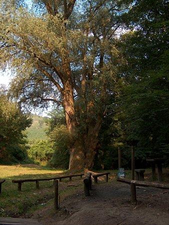 erdekes-helyek-magyarorszagon-dregely_vara_2009_08_01-00157.jpg