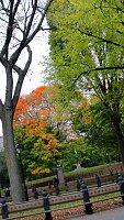 Central Park ősszel